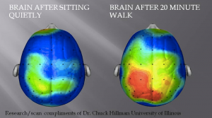 This is your brain (on the left). This is your brain on dance (to the right). Any questions?
