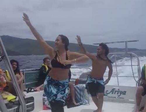 The Pulse of Polynesia